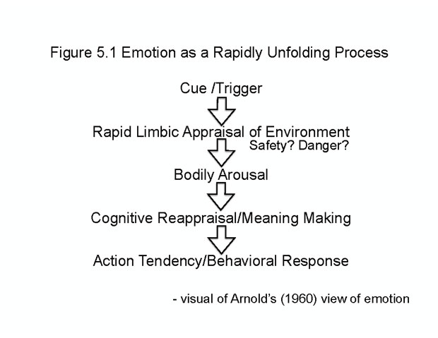 figure 5.1 - Emotion as a Rapidly Unfolding Process